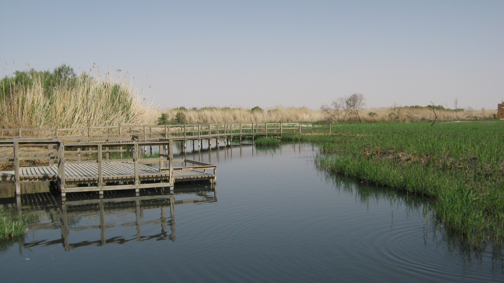 project WASTEWATER COLLECTION, TREATMENT AND EFFLUENT RE-USE IN AZRAQ picture